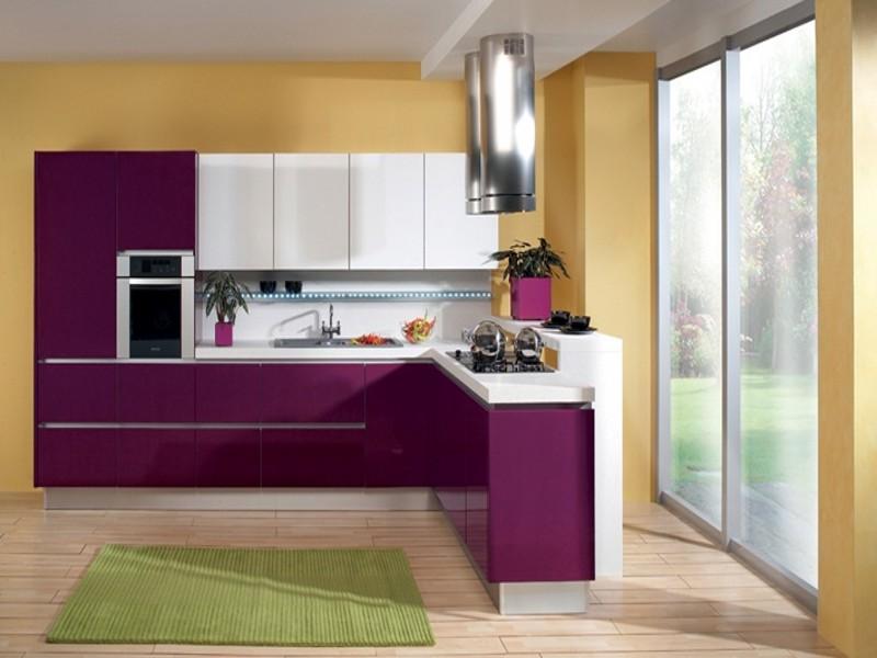 Kitchen Cabinet1