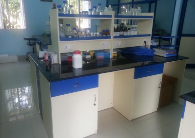 Lab Storage with Reagent Rack and Working Table
